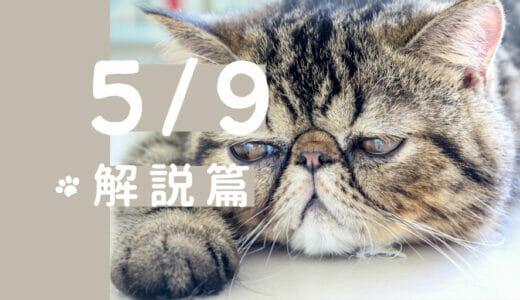 2021/5/9(日) 体癖解説講座|おじさまと猫