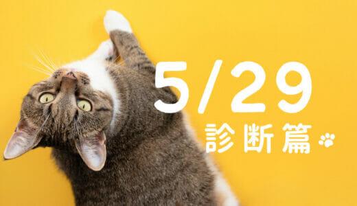 2021/5/29(土) 体癖診断 実習講座|ロック歌手