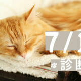 2021/7/17(土) 体癖講座 〜診断篇〜