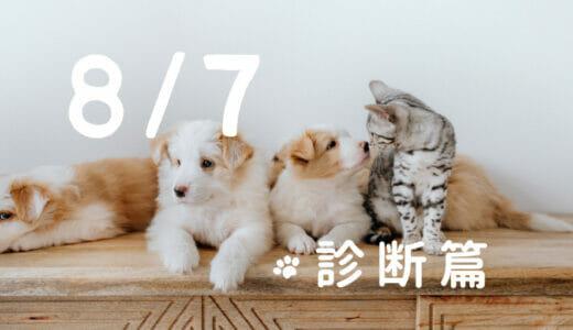 2021/8/7(土)  体癖講座 〜診断篇〜